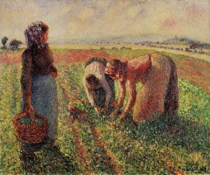 Camille Pissarro - Picking Peas oil on canvas Museum - 1893